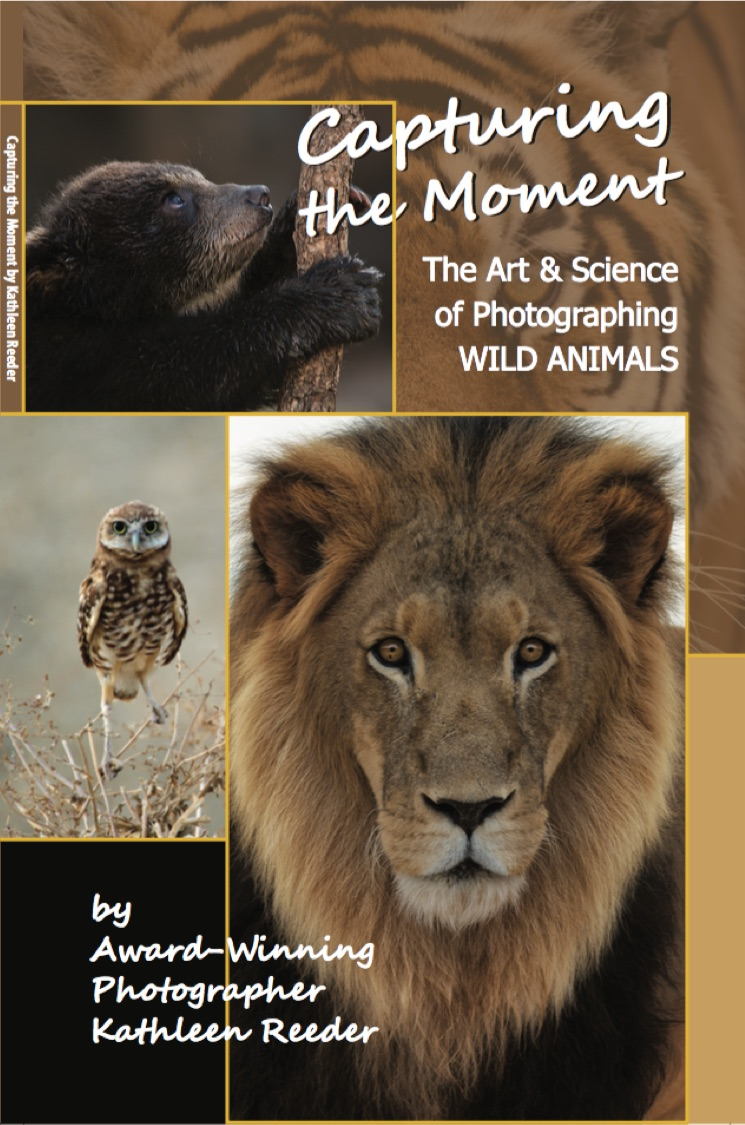 Ebooks and print books kathleen reeder wildlife photographer capturing the moment the art science of photographing wild animals fandeluxe Gallery